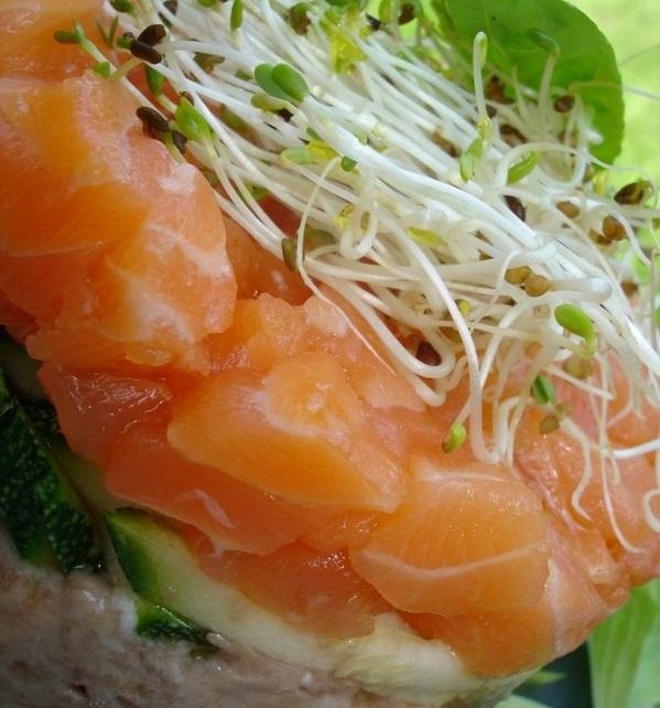 Assiette de saumon  meilleur restaurant de poisson de Paris